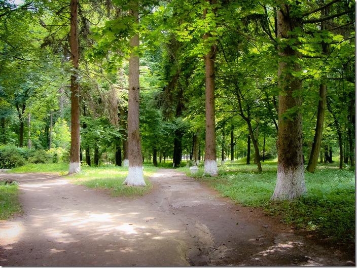Комаргород, парк  палацу Балашових