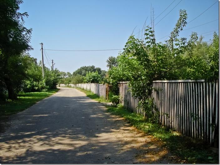 Браїлів, парк палацу фон Мекк