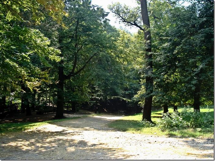Парк Кривчика
